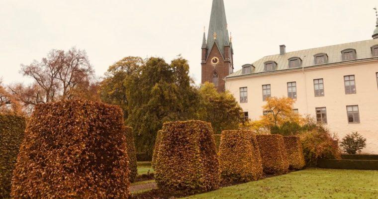 Guidning i Linköpings Slottsträdgård