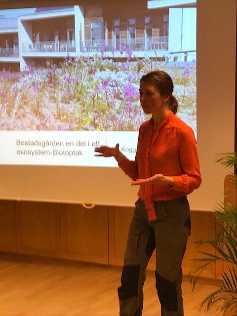 Gröna utemiljöers betydelse för hälsa och livskvalitet i staden