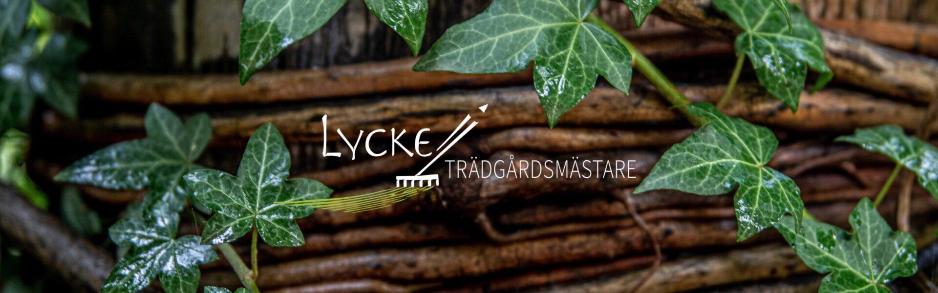 LYCKE Trädgårdsmästare
